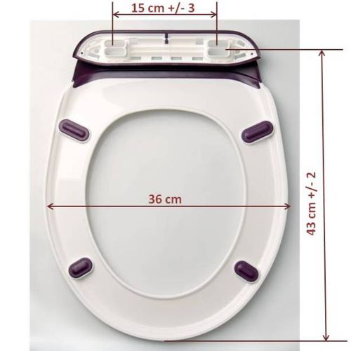 Quelles sont des dimensions de Lalunet'?